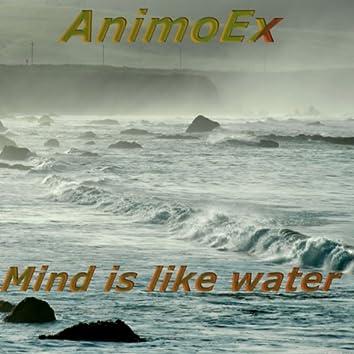 Mind Is Like Water