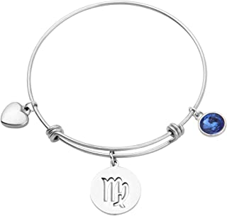 Stainless Steel Zodiac Sign and Birthstone Charm Necklace Bracelet