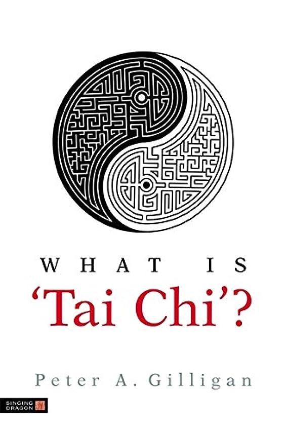 レザー分子意味するWhat Is 'Tai Chi'?