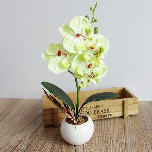 Miguor Mariposa Artificial orquídea Flor 3 Tallos con pequeño jarrón de cerámica para decoración del hogar, Paquete de 1
