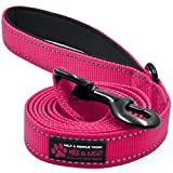 Max and Neo Reflective Nylon Dog Leash - We Donate a Leash to a Dog Rescue for Every Leash Sold (Pink, 4x1)