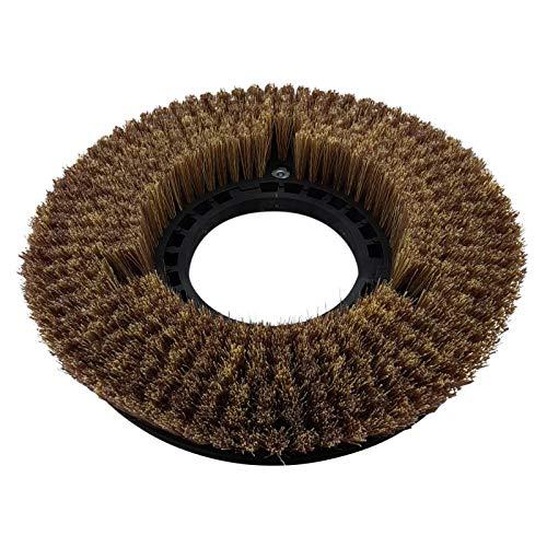 Polierbürste 5K für Dulevo Garant 585 Tellerbürste Treibtellerbürste Reinigungsbürste