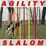 set slalom agility dog rosso/giallo aste rotonde flessibili...