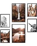 Heimlich Cuadros Decorativos - SIN Marcos -Decoración Colgante para Paredes de Sala, Dormitorios y Cocina - Arte Mural - 2 x A3 & 4 x A4-30x42 & 21x30 | » as Bosque B «