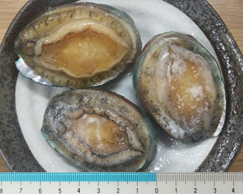 生食用 冷凍 蝦夷鮑 1kg ( 個41-50g ) あわび エゾ 鮑 解凍後そのままお召し上がり頂けます。限定品 エゾ あわび