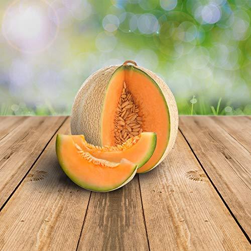 Melon Ananas d'America 25 x Samen - 100% Natursamen, Superfruchtig und Herrlich Erfrischend