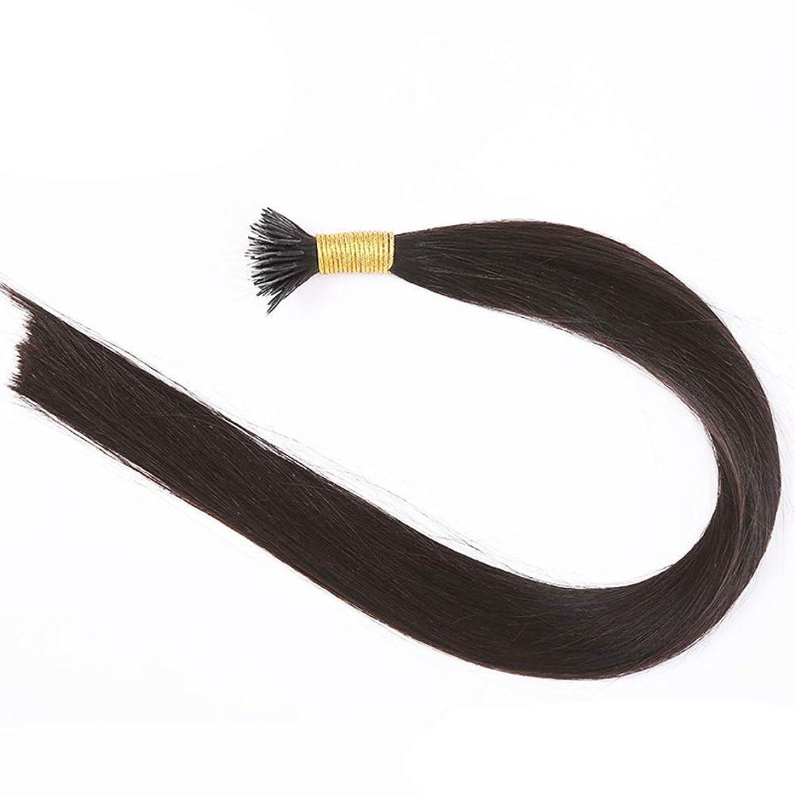 バッテリーパンダ識字JULYTER レミーティップフュージョンアンボードヘアブラック実際のブラジルの毛髪ナノエクステンションナノチップヘアストランド50グラム (色 : 黒, サイズ : 40cm)