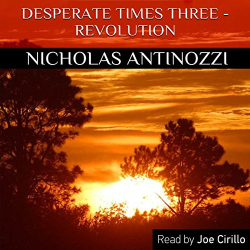 Desperate Times Three - Revolution audiobook cover art