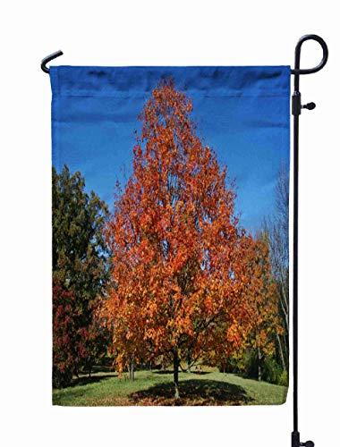 Herbst Garten Flagge, Home Yard dekorative 12X18 Zoll bunte Herbstblätter Botanischer Garten in Chicago uns doppelseitige saisonale Gartenflaggen Halloween Thanksgiving Garten Flagge, türkis grau