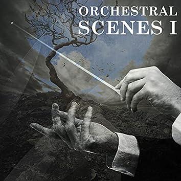 Orchestral Scenes, Vol. I