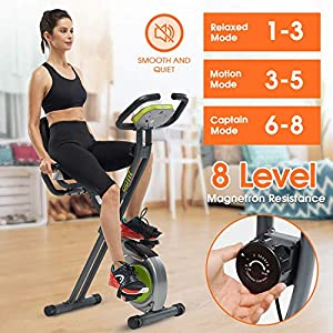 DPFIT Foldable Stationary Exercise Bike with 8-levels Magnetic Resistance, Upright Folding Indoor Bike with Arm Rest , Adjustable Seat,Tablet Holder and LCD Monitor for Home Workout, Grey