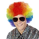 Fluffy Afro Synthetic Clown Wig for Men Women Cosplay Anime Party Christmas Halloween Fancy Funny Wigs (Rainbow)