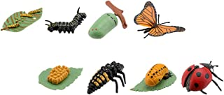 Housoutil 2 Sets Life Cycle of a Monarch Butterfly and Ladybug Nature Insects Life Cycles Growth Model Bug Figure Toy Kit ...