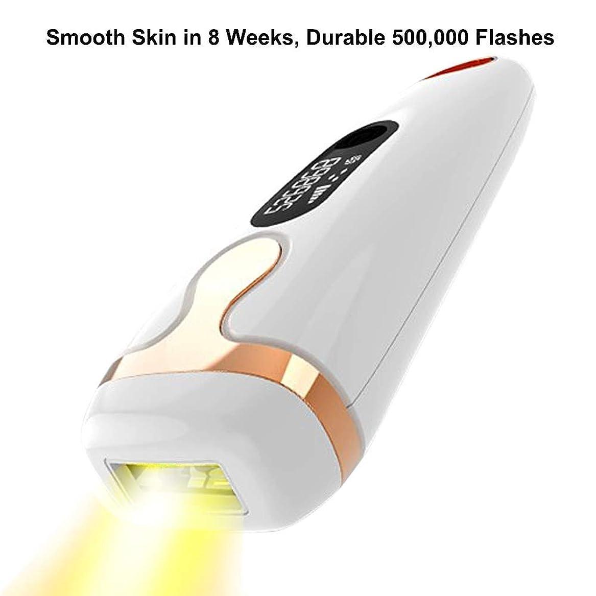 ステートメントサワー世辞レーザー脱毛器具全身用光子脱毛器脱毛よりもプライベートな部分500,000光脱毛器具
