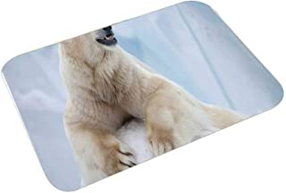 YOLIYANA Zoo Multi Function Floor Mat,Portrait of Large White Polar Bear on Ice Claws Antarctica North Outdoors Decorative for Bedroom Bathroom,23