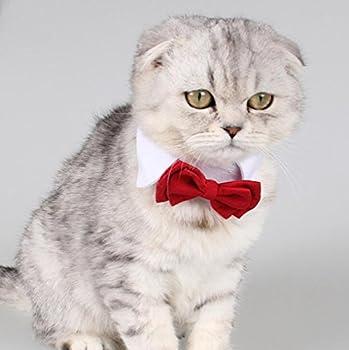 Diyafas 2 x Cravate de Chat Petit Chien Animaux Collier Réglable en Coton Chaton Chiot Noeud Papillon Formel Bowknot