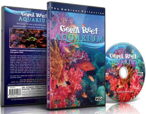 DVD - Korallenriff Aquarium 110 Minuten HD-Fischbecken mit Musik und natürlichen Klängen