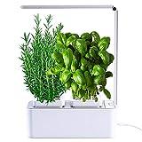 vaso smart- smart garden - serra idroponica per piante, vaso intelligente, grow box - orto da interno 100% bio - coltiva le erbe aromatiche- lampada smart luce led inclusa – dimensioni 28,5 x 26,5 x 37 cm