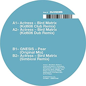 Bird Matrix (Remixes)