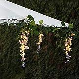Flower String Lights...image