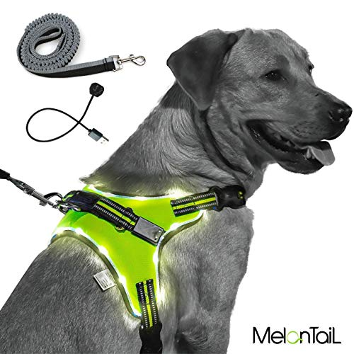 MelonTaiL Light Up Dog Harness with Bungee Leash-Rechargeable LED Light Dog Vest for Night Walking-Reflective Illuminated Harness for Extra Visibility-Glow in The Dark Lighted Vest for Dogs (Medium)