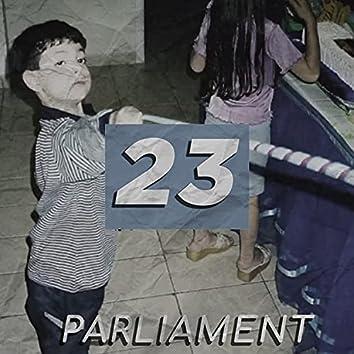 23 (Demo)