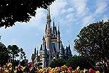 Amnogu Rompecabezas De Castillo De Cuento De Hadas De Disneyland para Adultos, Rompecabezas De 1000 Piezas para Niños, Juguetes Educativos, Rompecabezas, Juguetes De Madera para Niños 75x50cm