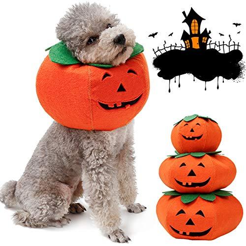 YANQIN Disfraz De Calabaza para Mascota De, Gato Perro Mascota Divertido Disfraz De Halloween De Calabaza 1 Pieza para Halloween Navidad Festival