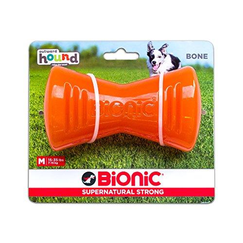 Outward Hound Bionic Hunde-Spielzeugknochen zum Apportieren und Kauen, langlebig, robust