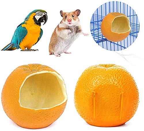 Vogel vogelvoeder Form Dispenser Voedsel Fruit Garden Outdoors Wild Birds