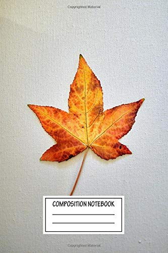 Composition Notebook: Vintage Posters Autumn Star Minimal Wide Ruled Note Book, Diary, Planner, Journal for Writing