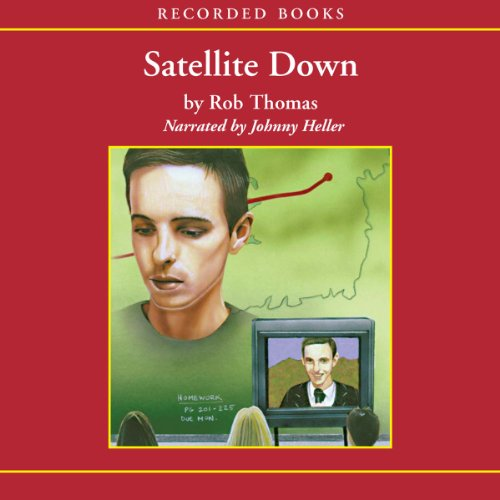 Satellite Down audiobook cover art