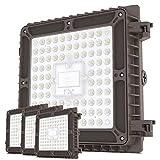 HYPERLITE 65W LED Canopy Light (4...
