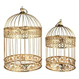 LACrafts - Metal Bird Cage Centerpiece, 2-Piece (17' & 13' Height, Gold)