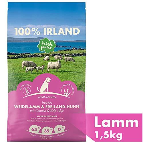 Irish Pure Adult Weidelamm & Freiland-Huhn mit Kelp-Alge - Premium Trockenfutter für Hunde, Hoher Fleischanteil, Getreidefrei, Sensitiv, Hundetrockenfutter, Hundefutter für alle Rassen (1,5kg)