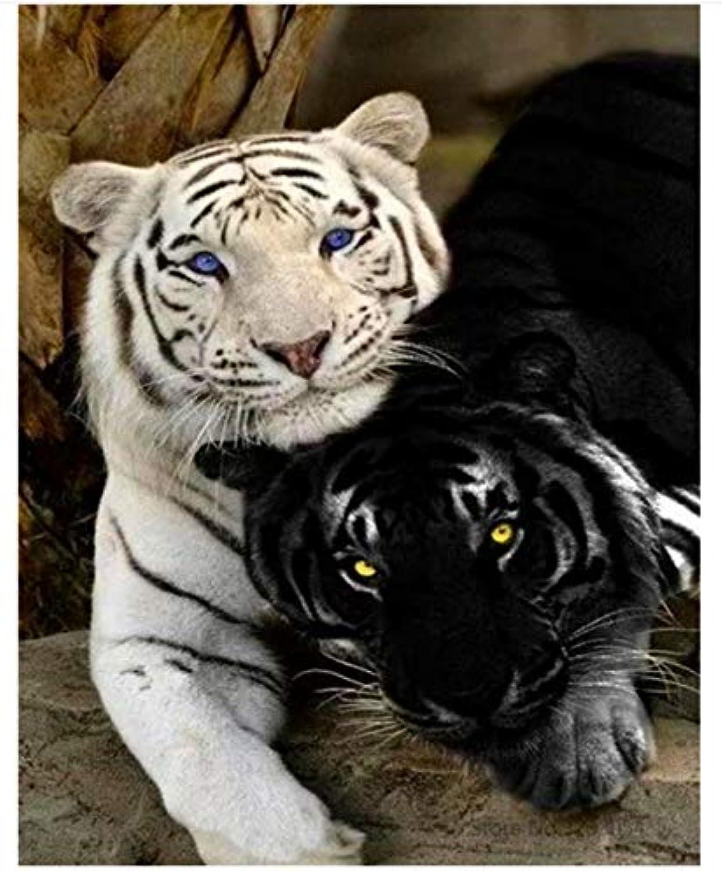 Agolong Diy Malen Nach Zahlen Tiger Acryl Acryl Acryl Malerei