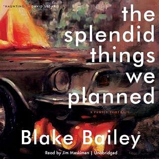 The Splendid Things We Planned audiobook cover art