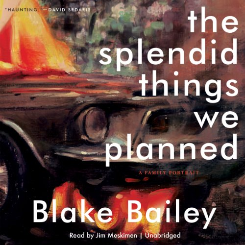 The Splendid Things We Planned audiobook cover art