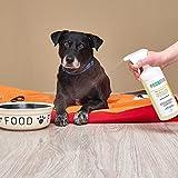 Geruchsneutralisierer Spray gegen Gerüche von Katzen-Urin - 6
