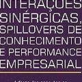 Interações Sinérgicas, Spillovers de Conhecimento e Performance Empresarial: a Força das Conexões no Interior de um APL de Tecnologia