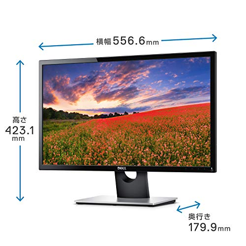 Dell(デル)『SE2416H』
