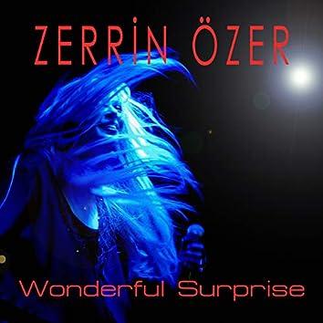 Wonderful Surprise (Okay Barış Version)