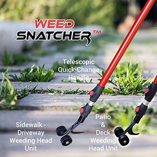 Best Review Of Ruppert Garden Tools,LLC The Weed Snatcher (Crack and Crevice Weeding Tool)