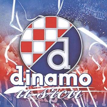 Dinamo U Srcu