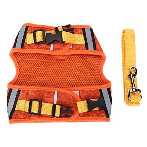 SALUTUYA 3 Größen und 2 Farben, Dog Traction Rope Set mit Gurtzeug, für Dog Cat Buckle Design, Pulling Rope Chest Strap(Orange, M)