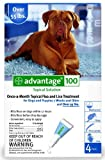Advantage Flea Control for Dogs Blue Over 55 lbs 4 mth sply