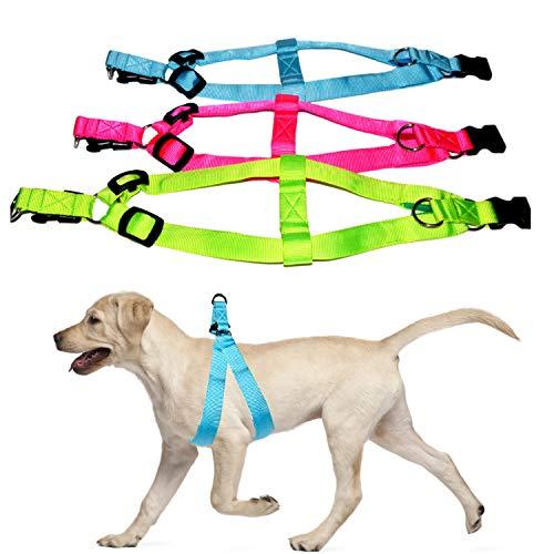 Talis Hundegeschirr mit LED-Beleuchtung, batteriebetrieben, für Sicherheit und Sichtbarkeit bei Nacht, wasserdicht, für kleine, mittelgroße und große Hunde geeignet, 3 Blinkmodi, Medium, rot
