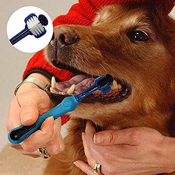 INTVN 2 Pack Brosse à Dents pour Chien pour Soins dentaires pour Animaux Brosse à Dents à Trois têtes Hygiène Dentaire Chien Brosse à Dents 3 Brosse tête (Blanc)