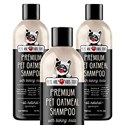 Best Anti Itch Shampoo for Dogs 7