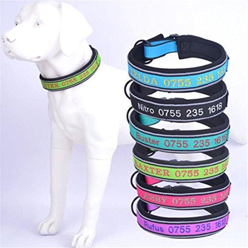 JKLYZXS Hundehalsband Mit Namen und Telefonnummer Bestickt, Personalisierter Justierbarer Klassischer Fester Kragen für Mittleren Großen Hund (M: (Anzug für 36-48 cm Hals), Schwarz)